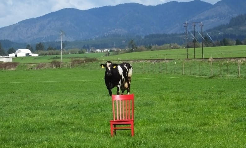Red Chair Travels takes a trip to the Farm