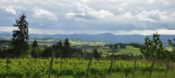 Willamette Valley Events