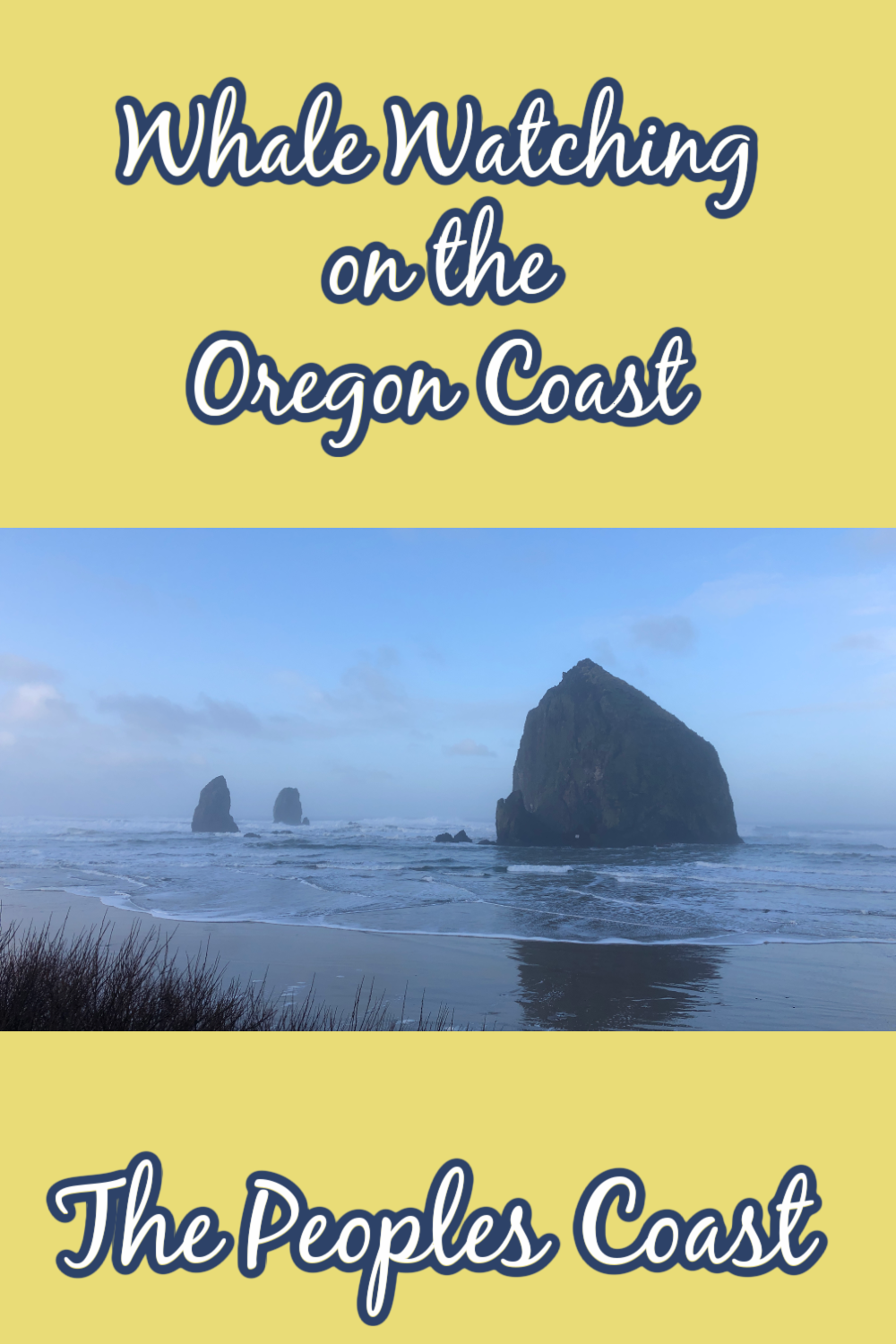 Spring Whale Watching on the Oregon Coast